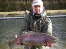 Gros poissons_6